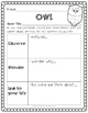 OWL Reading Strategy: A Graphic Organizer