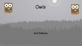 OWLS by Gail Gibbons Book Study