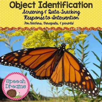 Object Identification {Autism Matching Data Progress Monit