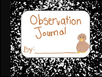 Observation Journal: Hatching Chicken Eggs (Special Deals!)