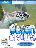 Ocean Animal Close Reading