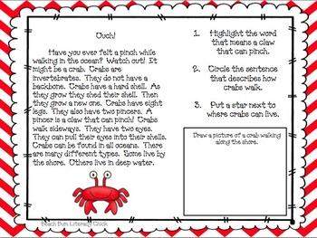 Ocean Animal Close Reading Packs - Bundle 1