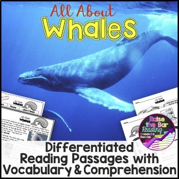 Ocean Animals Reading: Whales Differentiated Reading Passa