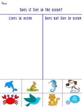 Ocean Animals - Does it live in the Ocean? Grade school Worksheet