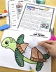 Ocean Animals Reading: Sea Turtles Differentiated Passages