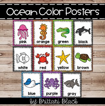 Ocean Color Posters