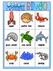 Ocean Creatures Bingo