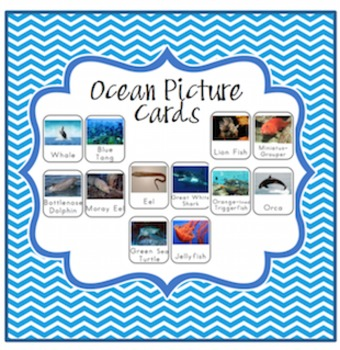 Ocean Picture Cards