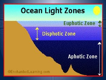 Ocean Power point