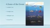 Ocean Zone Habitats