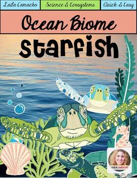 Ocean Animals Starfish