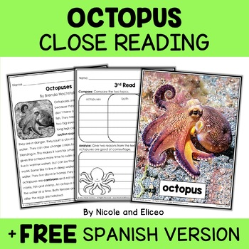 Close Reading Octopus Activities