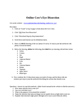 Online Cow Eye Dissection
