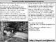 Ophelia Artistic Representations Analysis