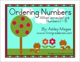 Ordering Numbers: What comes before? (Numbers 0-15) Math C