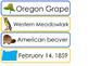 Oregon State Word Wall Bulletin Board Set. Geography Curriculum.