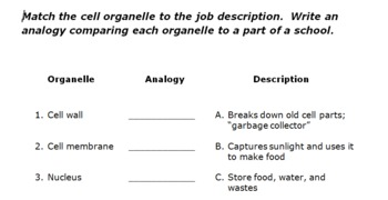 Organelle Matching and Analogies