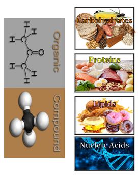 Organic Compounds Foldable