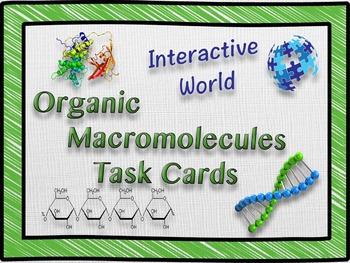 Organic Macromolecules Task Cards
