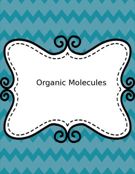 Organic and Inorganic molecules