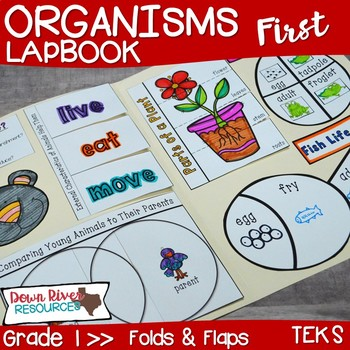 Organisms Lapbook (Plants and Animals)- First Grade {TEKS}