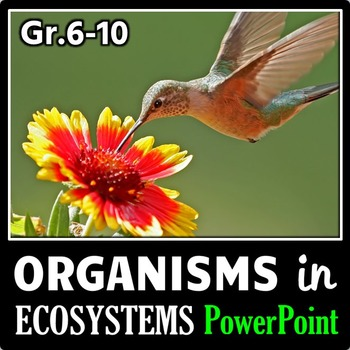 Organisms in Ecosystems - PowerPoint {Editable}