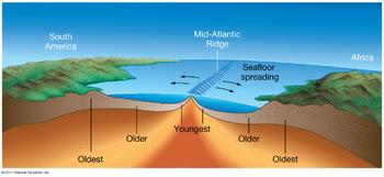 Origin of the Ocean Basin