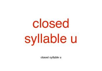 Orton-Gillingham Closed Syllable u Cards