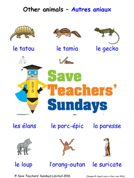 Other Animals in French Worksheets, Games, Activities and