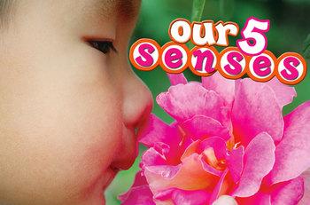 Our 5 Senses INTERACTIVE version