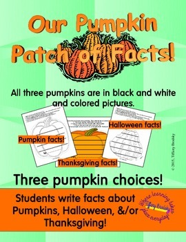 Our Patch of Pumpkin Facts Social Studies and Writing Bull