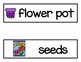Vocabulary Word Cards--Plant Life Cycle