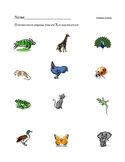 Oviparous Animals Worksheet
