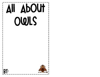 Owl Booklet