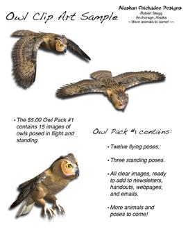 Owl Clip Art Sample Pack - Free