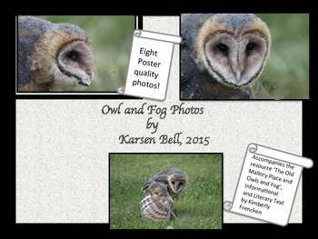 Owl Photographs: Poster Ready Prints to accompany The Old
