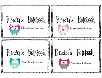 Owl Reader's Notebook Cover