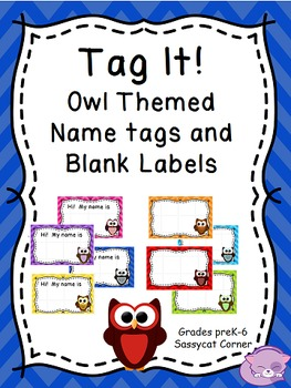 Owl Themed Name Labels - Editable File - Classroom Decor
