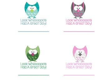 Owl Themed Notes for Students