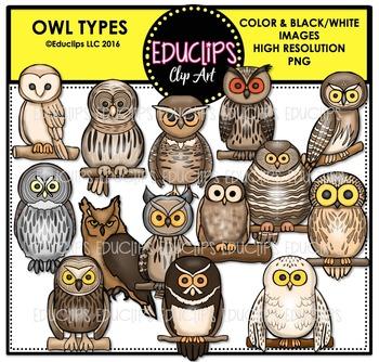 Owl Types Clip Art Bundle {Educlips Clipart}
