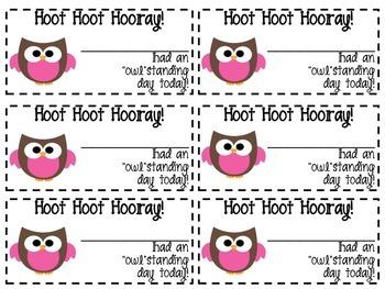 Owl positive behavior note pink clip chart