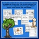 Give a Hoot for Owls - A Non-Fiction Activity Pack - Fall