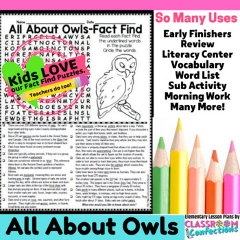 Owls Activity: Owls Word Search (reading, facts, nonfiction)