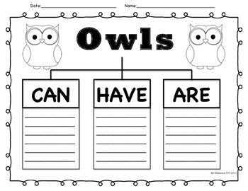 Owls - Can, Have, Are Graphic Organizer
