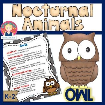Owls - Nocturnal Animals
