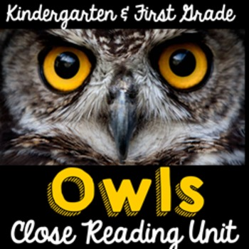 Owls Nonfiction Close Reading for Kindergarten & First Gra