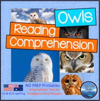 Owl Activities: Owls Reading Comprehension Worksheets
