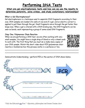 Printables Gel Electrophoresis Worksheet pcr gel electrophoresis practice worksheet by grace pokela worksheet