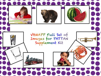 PDF of Full VB-MAPP Kit (two slides per page for flashcards)