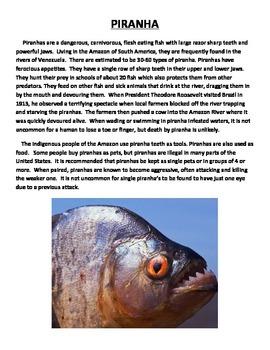 PIRANHA: SOUTH AMERICAN FISH (GRADES 4 - 6)